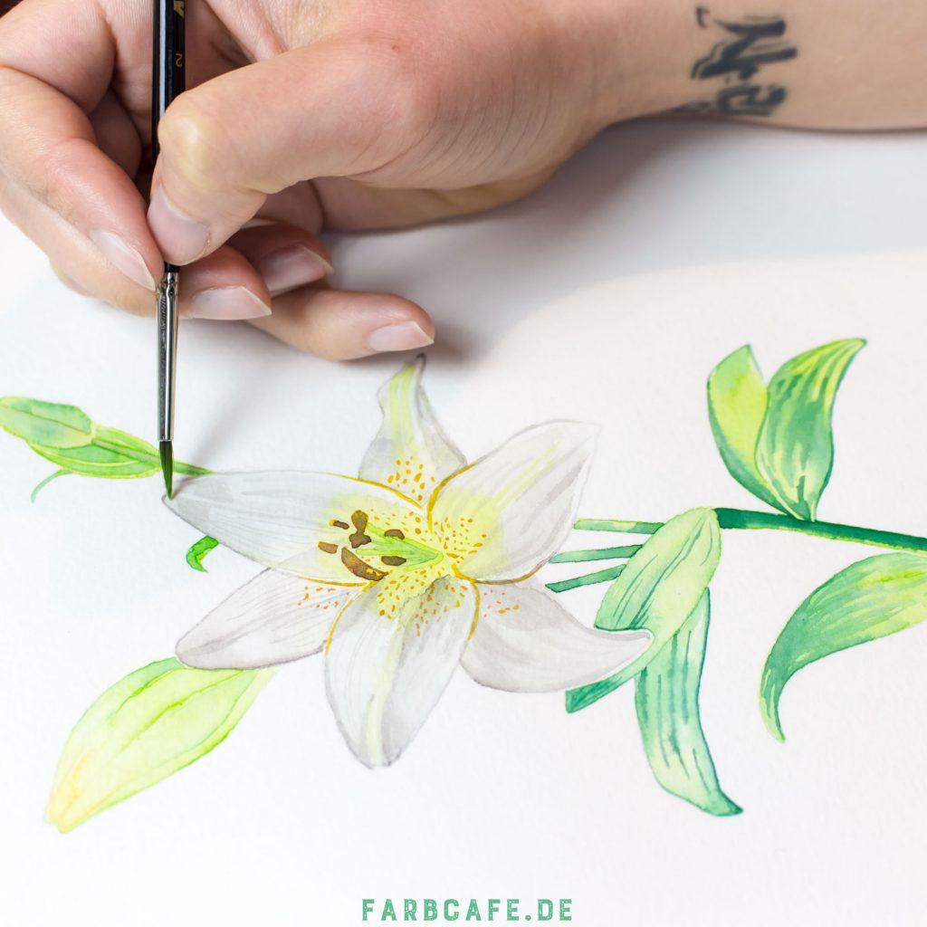 Eine Lilie in Aquarell gemalt.